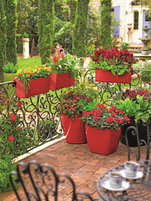 When choosing what color flowers to put in your pots, consider thesurroundings, including the patio surface and the planters. This red-on-red palette creates a handsome, sure-handed look. (Photo courtesy of Gardeners.com)