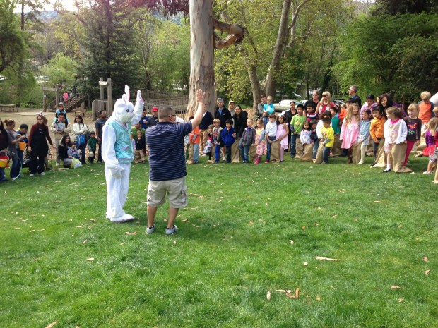 The Easter Bunny gets ready to release Saratoga kids on a hunt for Easter Eggs during the traditional Easter Weekend hunt in Wildwood Park.