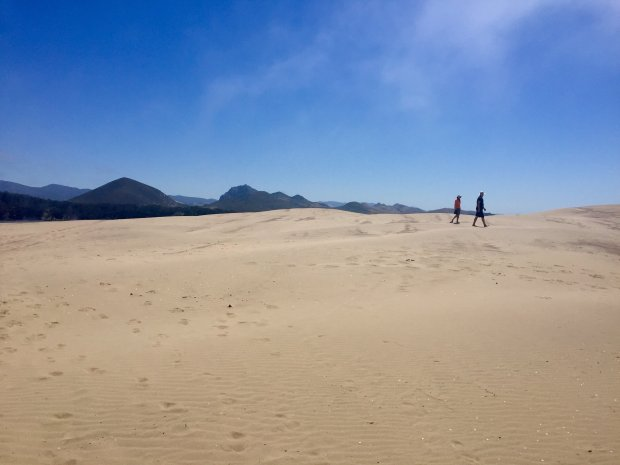 Stroll through the sand dunes in Morro Bay estuary. (Karen D'Souza)