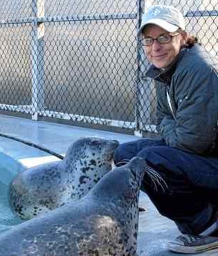 UCSC researcher Colleen Reichmuth poses at Long Marine Laboratory with two spotted seals, used for study with NMFS marine mammal permit 18902. Reichmuth investigates marine mammal hearing, and some of her data was used to write a 2016 NOAA memo that is now under review, as per President Trump's executive order. (UCSC — Contributed)