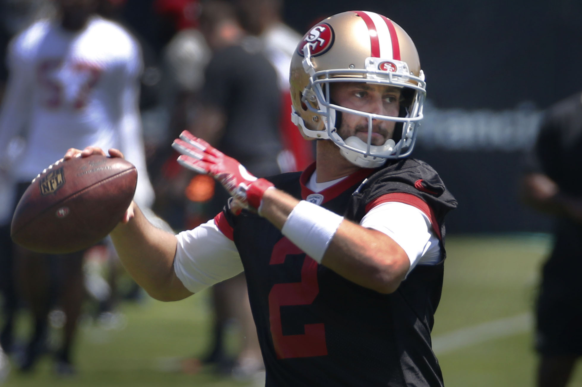 Image result for brian hoyer 49ers