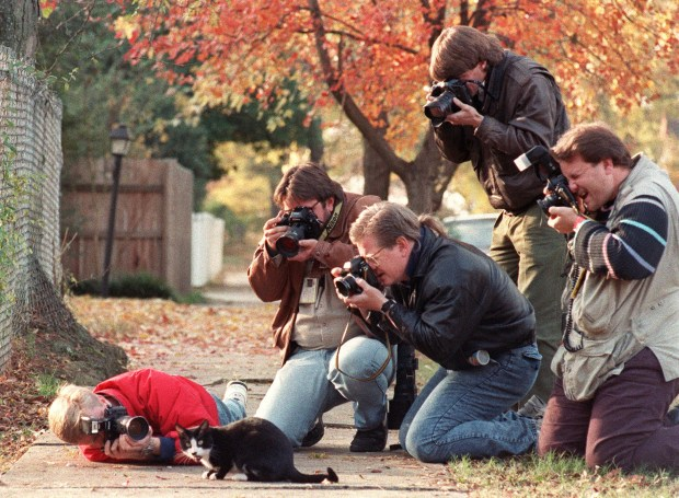 LITTLE ROCK, UNITED STATES: Press photographers surround Socks, the cat who belongs to the family of US President-elect Bill Clinton 17 November 1992 outside the governor's mansion in Little Rock. (Photo credit should read MIKE NELSON/AFP/Getty Images)