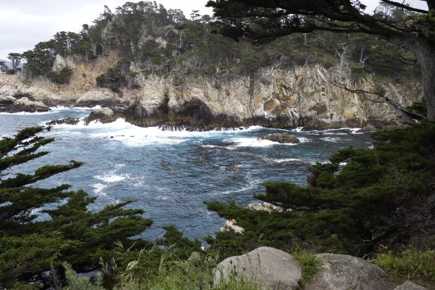 The views from Point Lobos, near Carmel-by-the-Sea, are simply spectacular. (Photo courtesy of Alice Bourget)