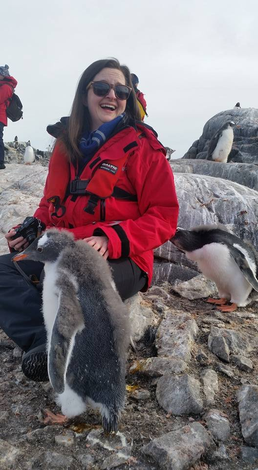 An Antarctic adventure brought Dublin resident Lisa Turner face to facewith gentoo penguin chicks. (Courtesy of Lisa Turner)