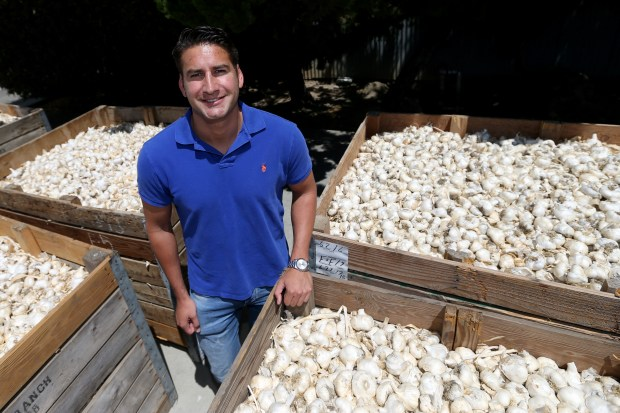 Executive Vice President Ken Christopher poses for a photograph at Christopher Ranch in Gilroy, Calif., on Wednesday, July 19, 2017. The garlic producers recently solved a labor shortage by increasing wages from $11 to $13 an hour with another boost to $15 an hour planned for 2018. (Anda Chu/Bay Area News Group)