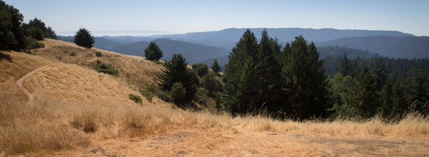 Castle Rock State Park as seen from Hwy. 9 in the Santa Cruz Mountains near Los Gatos, California, Thursday, Aug. 31, 2017. A former Christmas tree farm on Skyline Blvd. will be transformed into a new $5.8 million entrance to Castle Rock State Park, the scenic 5,200-acre preserve that overlooks the Pacific Ocean from the Santa Clara-Santa Cruz county line. (Patrick Tehan/Bay Area News Group)