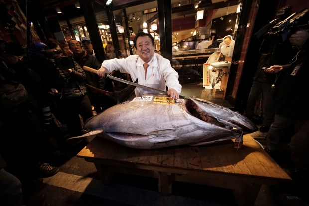 FILE - In this Jan. 5, 2015, file photo, Kiyoshi Kimura, president of Kiyomura Co., poses a bluefin tuna at his Sushi Zanmai restaurant near Tsukiji fish market in Tokyo. The latest assessment by scientists paints a likely bleak future for the Pacific bluefin tuna, the favorite of sushi-lovers whose population has dropped by more than 97 percent from its historic levels. (AP Photo/Eugene Hoshiko, File)