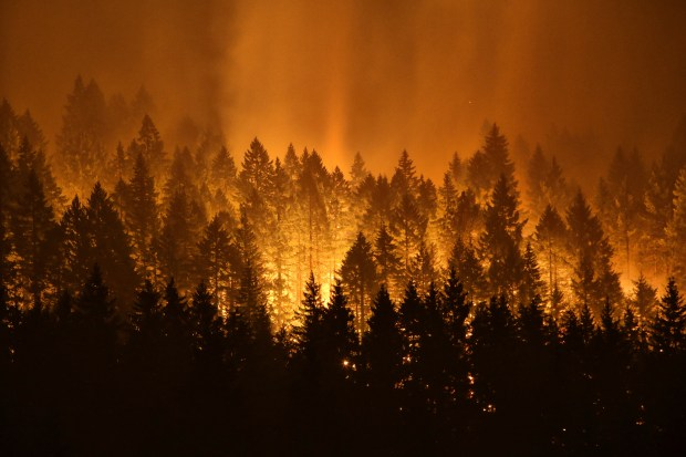 Clackamas county communities of molalla and colton were under level 3, or go now, evacuation orders. Boy 15 Charged In Devastating Oregon Wildfire
