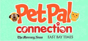 New Pet Pal Logo