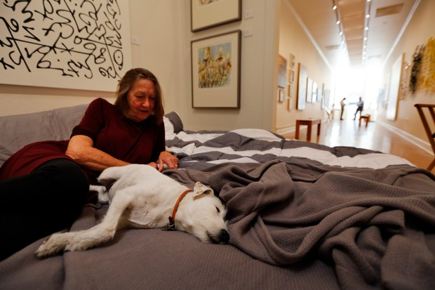 Jan Sofie sits with her dog Maddie on the inflatable bed her and her husband Scott bought to set up in the back of their art gallery, Sofie Contemporary Arts, in Calistoga, Calif., as they wait for the evacuation order to be lifted on their home outside of Calistoga on Monday, Oct. 16, 2017. They believe there home is still standing; however, they are just outside the area where the evacuation order was lifted. (Laura A. Oda/Bay Area News Group)