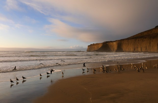 Waves lap the shoreline at Tunitas Creek Beach on Friday, Nov. 10, 2017, south of Half Moon Bay, Calif. The 58-acre property is being purchased by Peninsula Open Space Trust and will be converted into a new San Mateo County park. (Jim Gensheimer/Bay Area News Group)