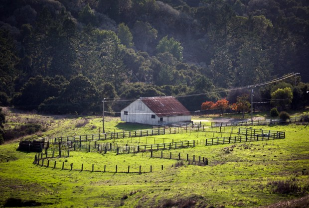 An old barn is part of the new La Honda Creek Open Space Preserve in La Honda, California, Tuesday, Nov. 28, 2017. On Friday, the MidPeninsula Regional Open Space District, which purchased the land in 2006, will open six miles of trails for hikers and horse riders through the former Driscoll Ranch, which it now calls the La Honda Creek Open Space Preserve. (Patrick Tehan/Bay Area News Group)