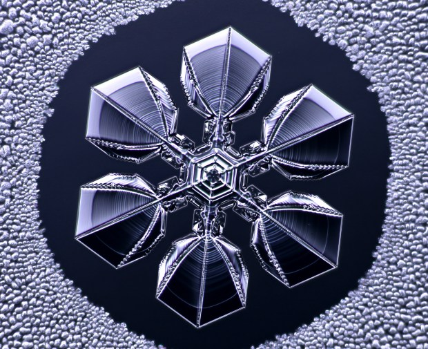 A snowflake, created in the lab and photographed by CalTech physics professor Kenneth G. Libbrecht. (Courtesy of Kenneth G. Libbrecht)