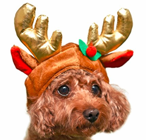 Festive reindeer hat by PAWZ Road. (Amazon.com)