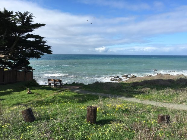 The walking trail between Fiscalini Ranch Preserve and Moonstone Beachwends its way through one of Cambria's neighborhoods, but still has plenty of views, and places for the public to stop and enjoy them. (Lisa Wrenn/Correspondent).