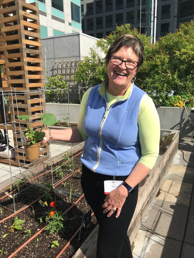 Rebecca Jepsen is always focusing on creating and sustaining healthy communities, from her work as a certified master gardener, to her work with the Master Gardener Corporate Outreach Program, helping corporations go green and garden.