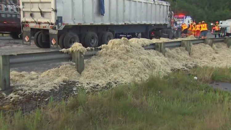 It's no yolk! 40000 pounds of chicken feathers are dumped across the highway after truck driver 'falls asleep at the ...
