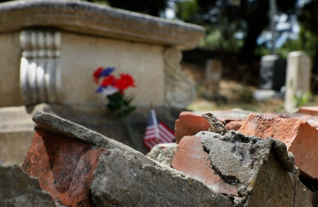 A lizard suns himself on a broken brick wall at the Mare Island Naval Cemetery in Vallejo, Calif., on Friday, May 25, 2018. The Mare Island Naval Cemetery is the first Naval cemetery in the Pacific founded in 1858 and the final resting place for over 800 veterans, including three Congressional Medal of Honor recipients and Anna Key Turner, the daughter of Francis Scott Key. (Laura A. Oda/Bay Area News Group)
