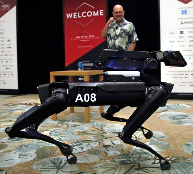 In this Thursday, May 24, 2018, photo a Boston Dynamics SpotMini robot is walks through a conference room during a robotics summit in Boston. The secretive robotics firm Boston Dynamics and its founder Marc Raibert, at rear, have spent decades designing robots that can jump, gallop or prowl like animals. (AP Photo/Charles Krupa)
