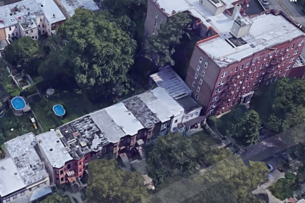 Aerial view shows the large tree in the backyard of the Seeley Street rowhouse.