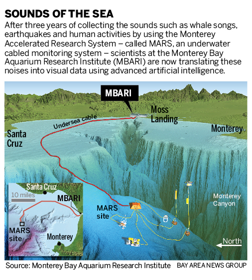 What scientists hear when they mike up Monterey Bay