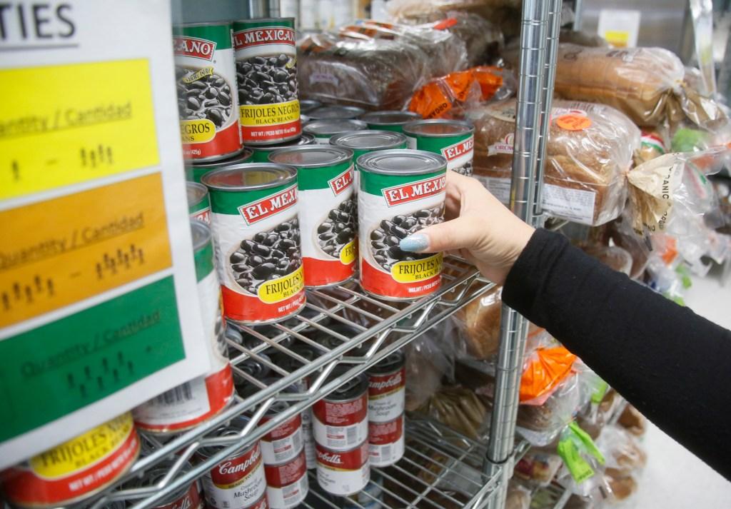 San Mateo County Food Stamps