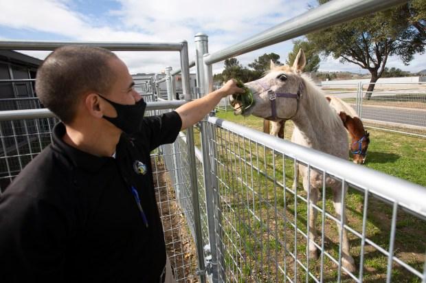 Photos: Santa Clara County opens new Animal Services Center in San Martin 7