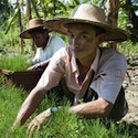 Conservation efforts honored in Myanmar