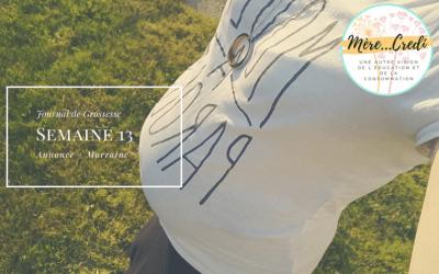Journal de grossesse: Semaine 13 (SA)