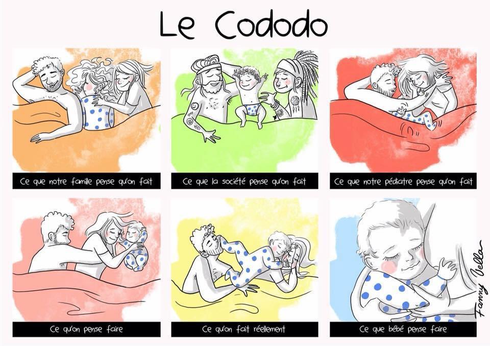 le Cododo qu'est ce que c'est selon moi, les autres et bébé ?