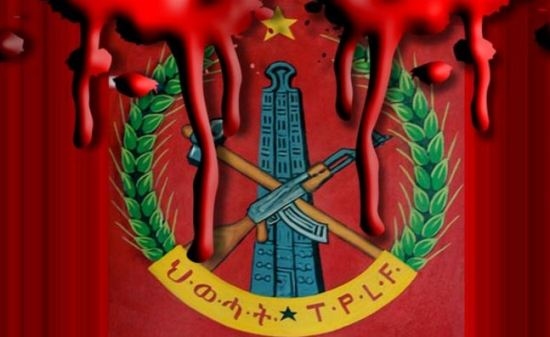 Noose around TPLF neck tightens as Amara and Oromo join forces