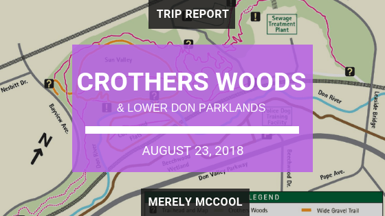 Crothers Woods and Lower Don Parklands
