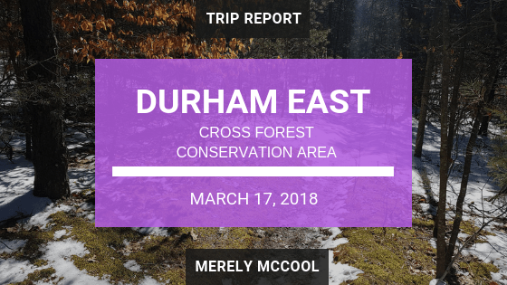 Durham East Cross Forest CA