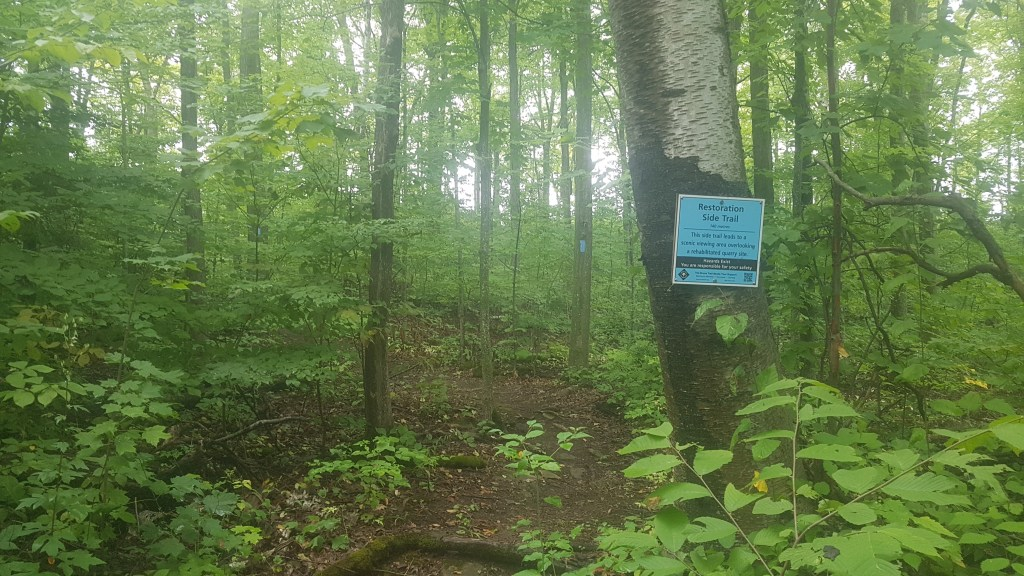 Hiking Bruce Trail: Scotch Block to Restoration side trail - Halton Hills, Ontario - Merely McCool