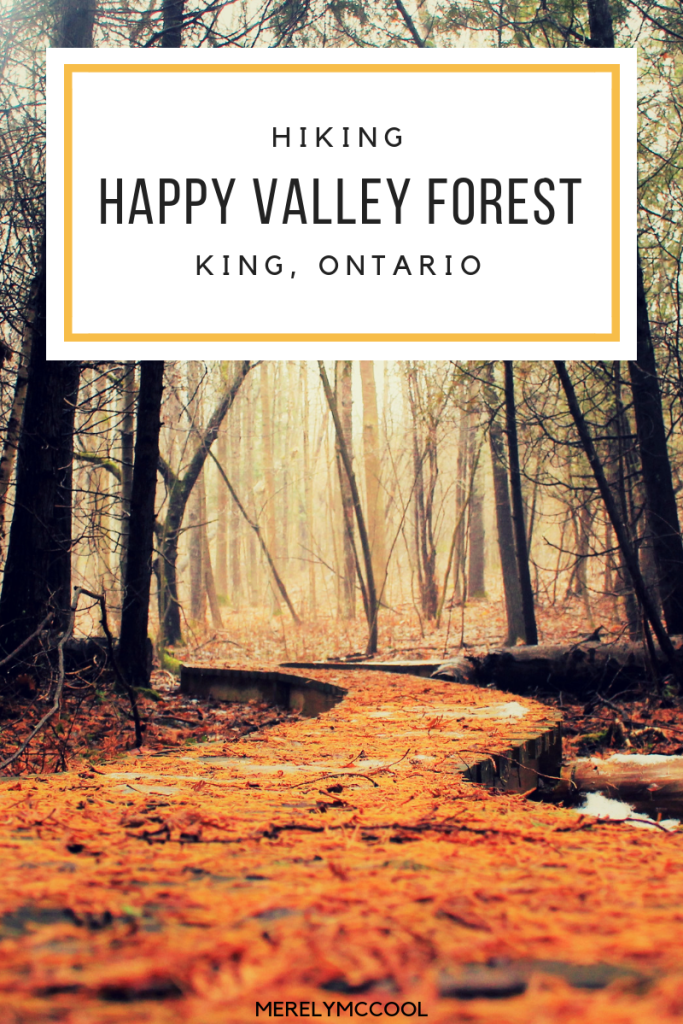 Hiking Happy Valley Forest - King, Ontario - Merely McCool