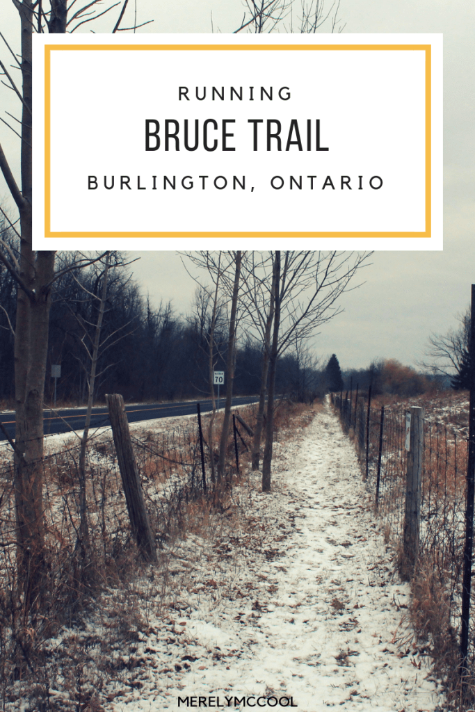 Running the Bruce Trail - Burlington, Ontario - Merely McCool