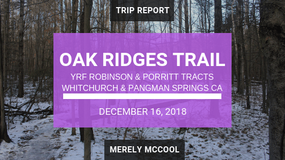 Hiking Oak Ridges Trail through York Regional Forest's Robinson and Porritt Tracts, and Whitchurch and Pangman Springs Conservation Areas - Newmarket, Ontario - Merely McCool