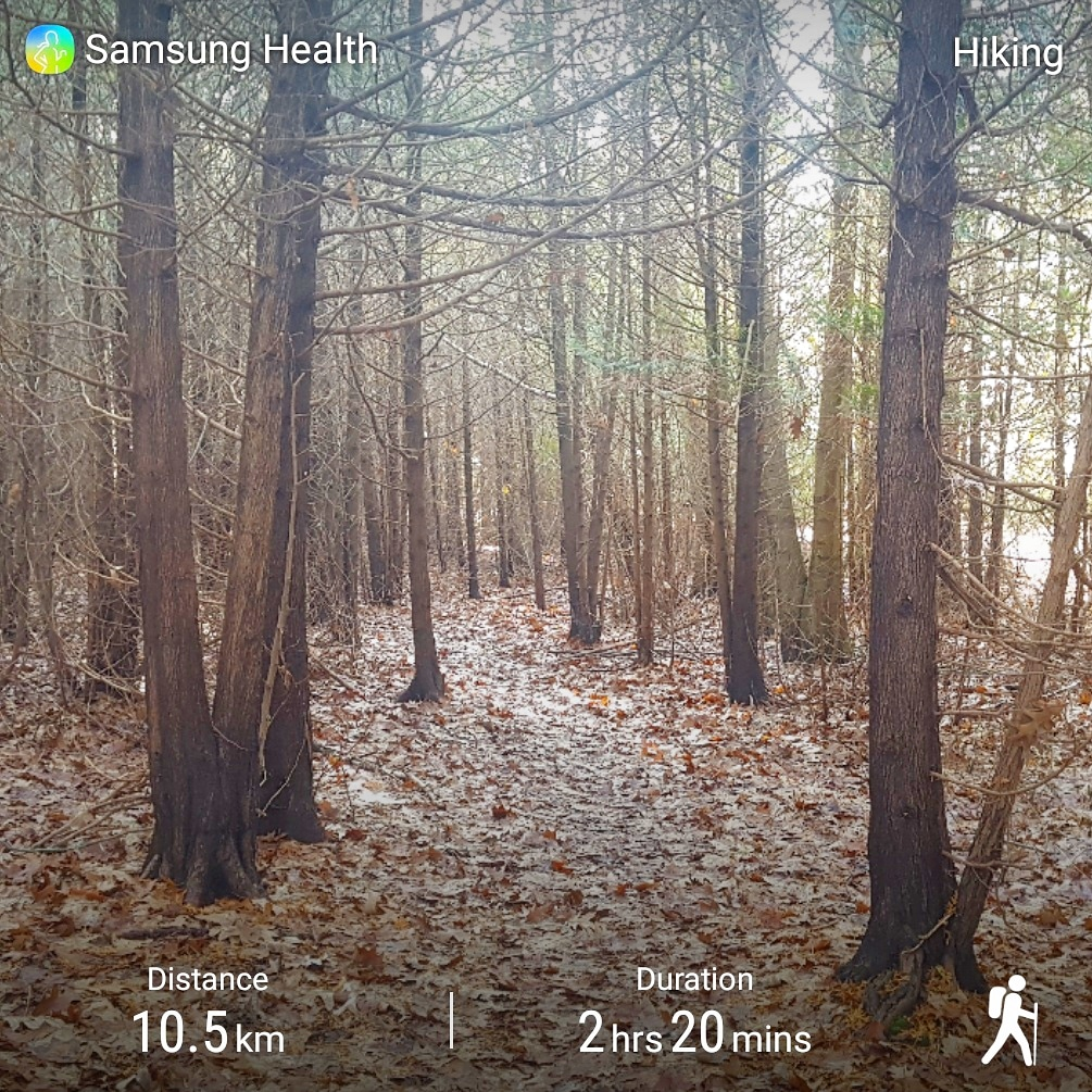 Hiking through Darlington Provincial Park and McLaughlin Bay Wildlife Reserve - Oshawa, Ontario - Merely McCool