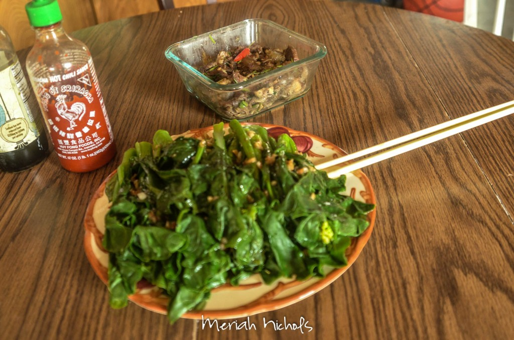 meriah nichols pho recipe september 2014 (13 of 4)-2