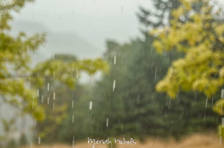 rain (16 of 17)
