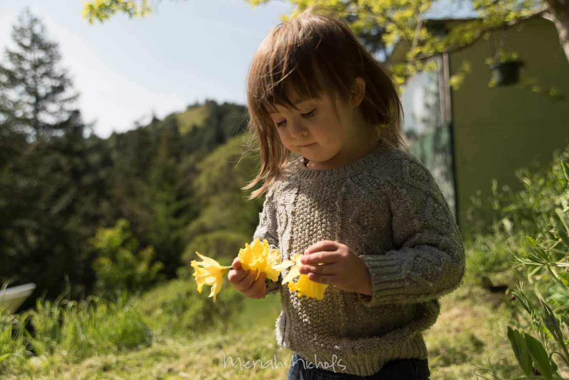 child with Down syndrome looks at yellow daffodils in her hand