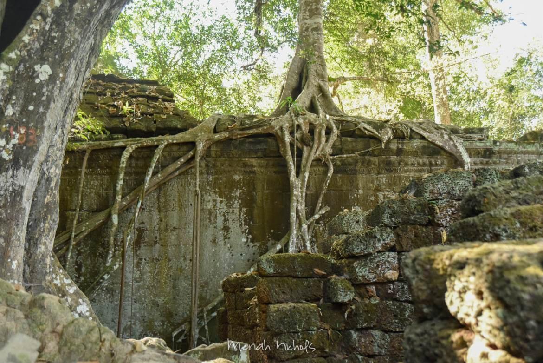 Meriah Nichols Ta Prohm Angkor Wat -14