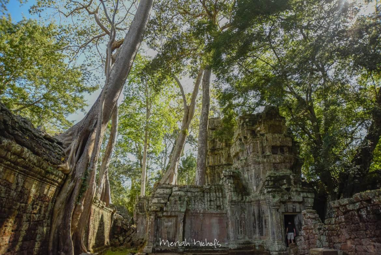 Meriah Nichols Ta Prohm Angkor Wat -18