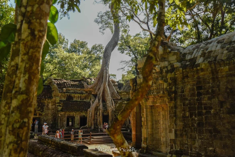 Meriah Nichols Ta Prohm Angkor Wat -22