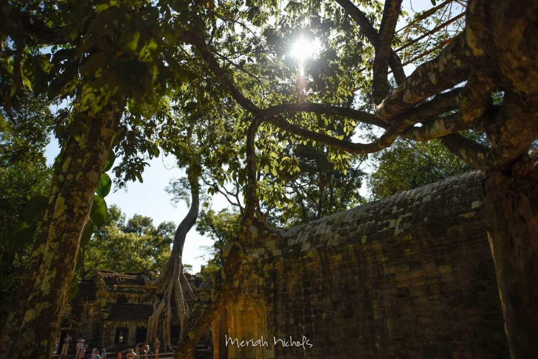 Meriah Nichols Ta Prohm Angkor Wat -23
