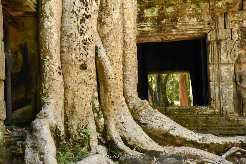 Meriah Nichols Ta Prohm Angkor Wat -26