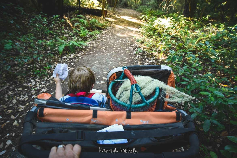 Meriah Nichols Redwoods-40