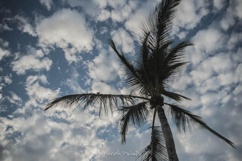 meriah-nichols-hawaii-2016-54