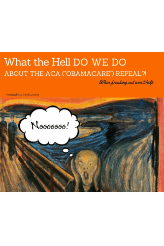 "orange background with the scream and a thought bubble reading ""noo"" - text reads, what the hell do we do about the aca obamacare repeal? when freaking out won't help."