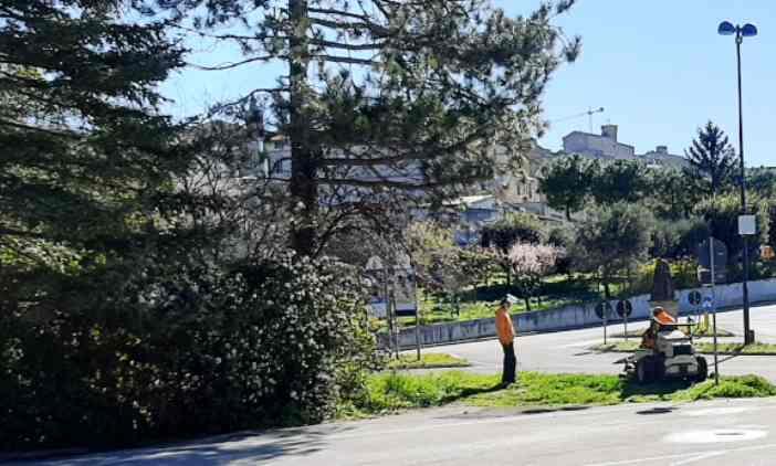 Manutenzione verde via Benigni